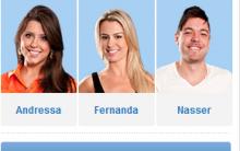 Enquete – Votar Ou Votação No Vencedor Do BBB 13 – Big Brother Brasil 2013. Rede Globo De Televisão.