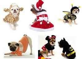 cachorros-roupas