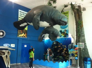entrada-aquario