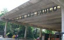 Diversão Parque Zoológico de São Paulo – Fotos, Ingressos e Horário de Funcionamento
