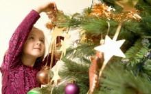 Dia Oficial de Montar a Árvore  de Natal – Ceia da Árvore – Informações