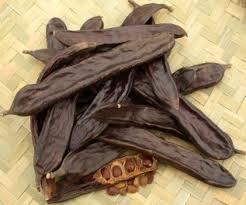Alfarroba Substitui Cacau no Preparo de Chocolate – Benefícios Para a Saúde