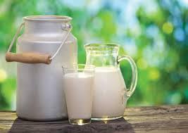 leite-alisa