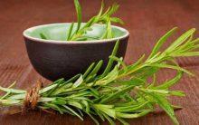 Chá de Alecrim Dieta Para Emagrecer – Benefícios e Cardápio