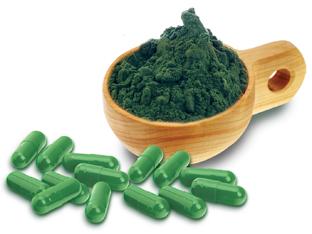 Espirulina – O Que É, Benefícios e Receita