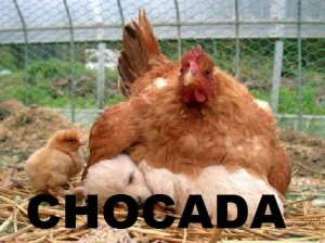 foto-whatsapp-chocada