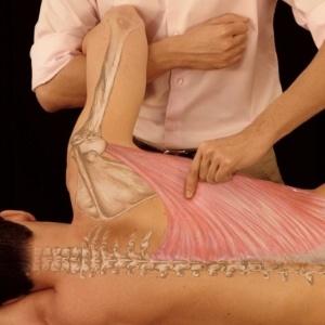 Osteopatia – O Que É, Tratamento e Benefícios