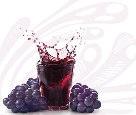 Vinho Para Combater Doença dos Rins