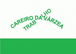 am-careiro-da-varzea-bandeira