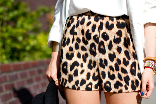 Estampa Animal Print – Como Usar