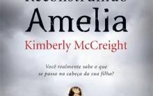 Livro Reconstruindo Amélia – Sinopse
