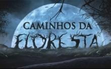 Filme Caminhos da Floresta – Sinopse, Elenco e Trailer