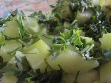 dieta-chuchu-salada