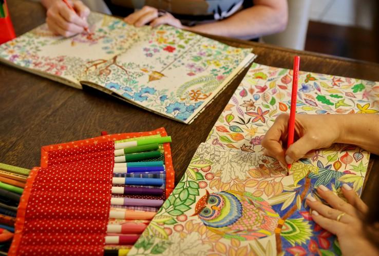 Livros De Colorir Para Adultos – Novo Estímulo e Anti Stress