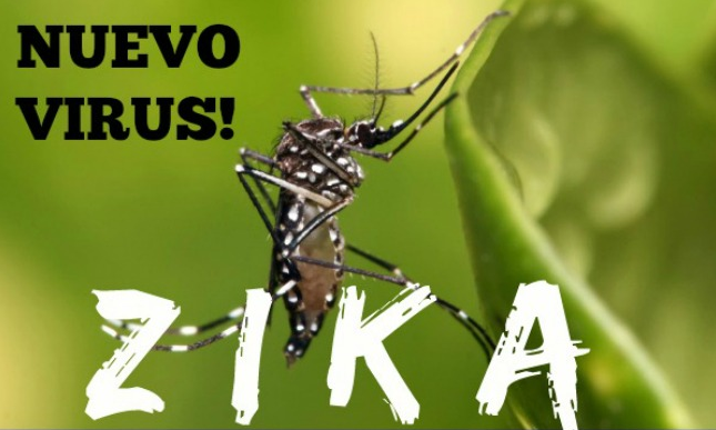 Zika Vírus. Transmissor