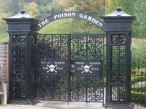 Jardim-Venenoso-Portão