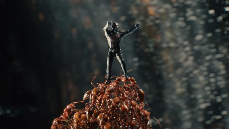 Homem-Formiga-formiguinha