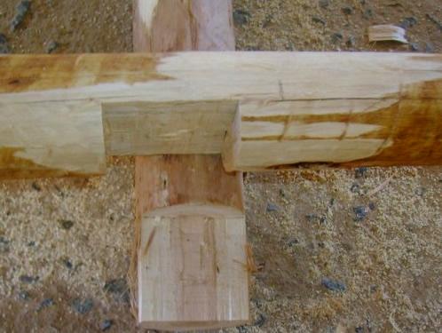 Viveiro-passaro-madeira
