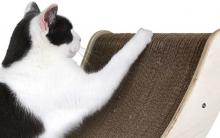 Gatos Unhas e Arranhões – Dicas de Como Proteger os Móveis.