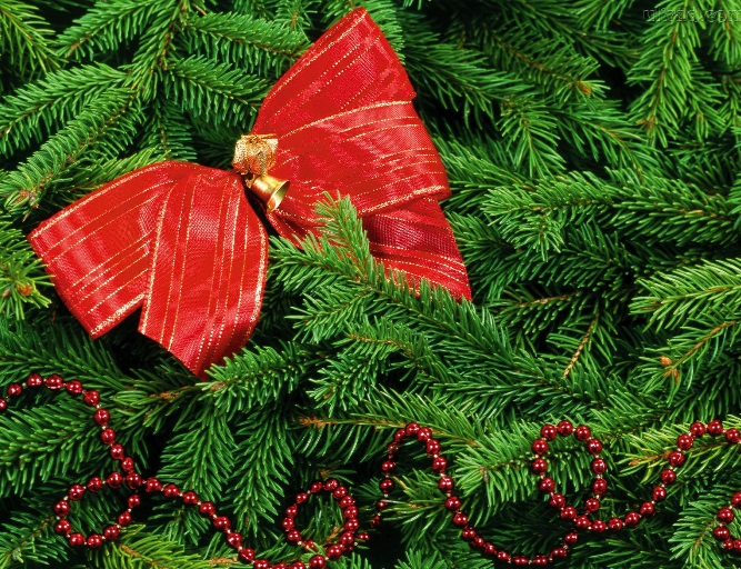 Árvore de Natal Passo laços