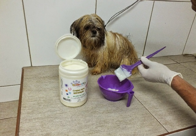 Animais-e-tratamentos-hidra