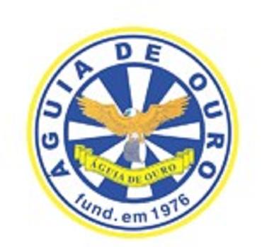 Escolas-de-Samba-agui