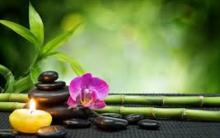 Feng Shui – O Que é e Dicas de Harmonia