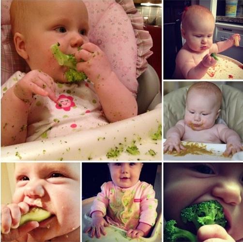 Método BLW o Desmame Guiado Pelo Bebê – Como Fazer