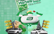 Tic Tac Promoção Hortelã Mix 2015 – Como Participar