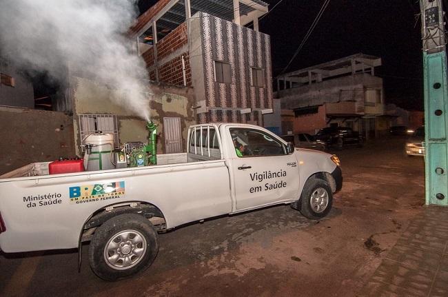 Mosquito Aedes fumacê