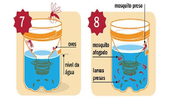 Mosquito da Dengue funciona