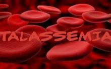 Talassemia Anemia – O Que É, Sintomas e Tratamento