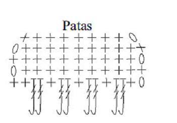 Tapete de Coruja grafico patas