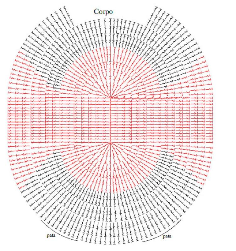 Tapete de Coruja grafico