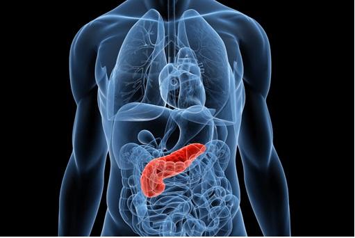 Pancreatite – O Que É, Causas e Como Tratar