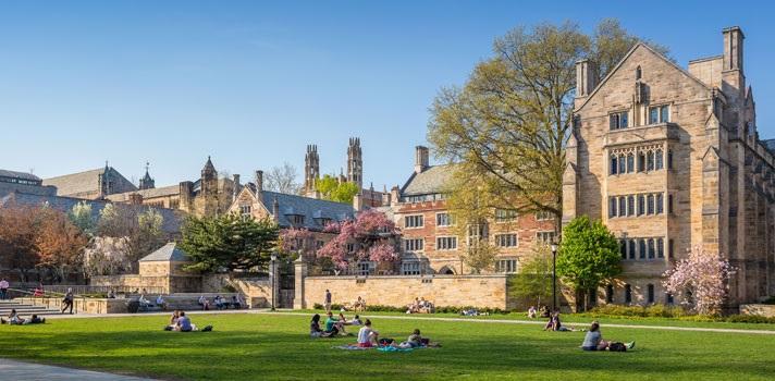 Universidade Yale Bolsa de Estudos – Inscrição
