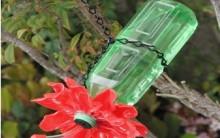 Bebedouro Para Beija-Flor Reciclável – Como Fazer