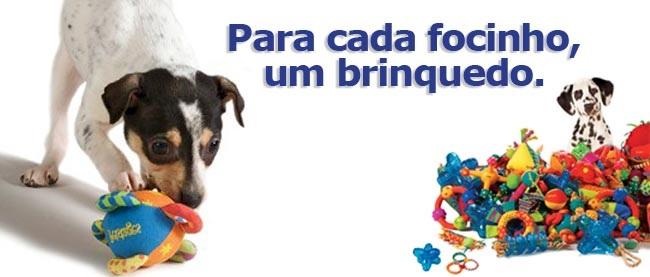 Brinquedos Interativos Para Cães – Benefícios Dicas