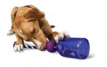 Brinquedos Interativos Para Cães – Benefícios e Dicas