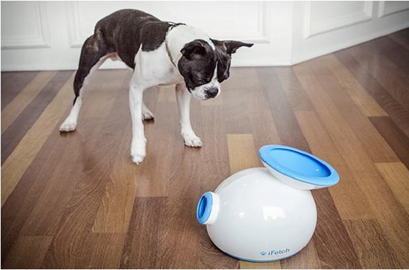 Brinquedos Interativos Para Cães Benefícios e Dicas