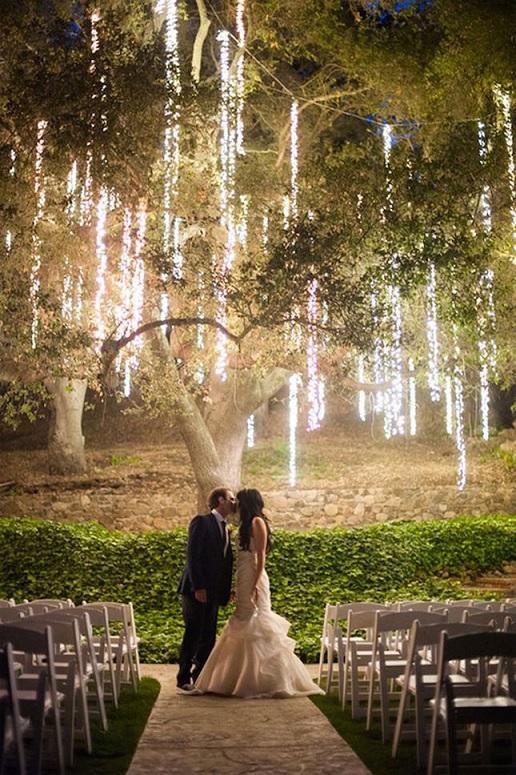 Casamento na Floresta - arvores