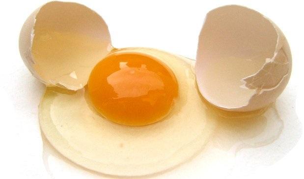 Gravidez e Alimentos Proibidos – ovo