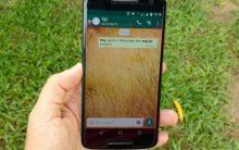 WhatsApp Negrito, Itálico e Palavras Grifadas – Como Usar