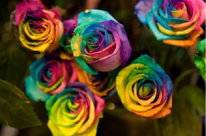 Flores Para Decoração de Casamento - Quais e