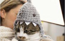 Touca Gato Tubarão Crochê – Como Fazer