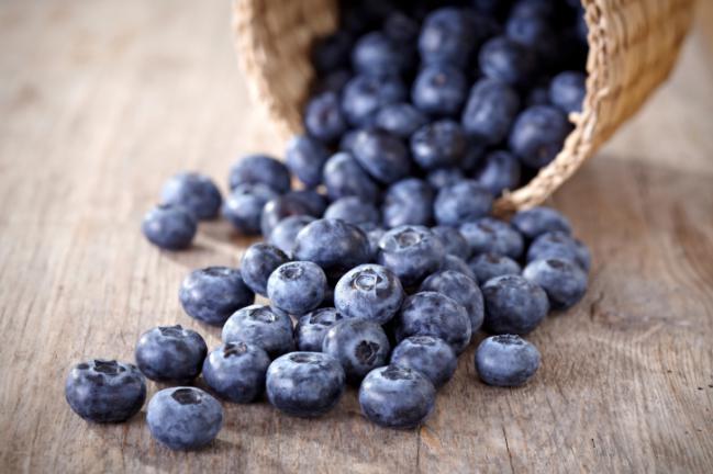 Analgésicos Naturais – Quais Alimentos mirtilo
