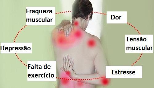 Fibromialgia Estudos Recentes – Fonte da