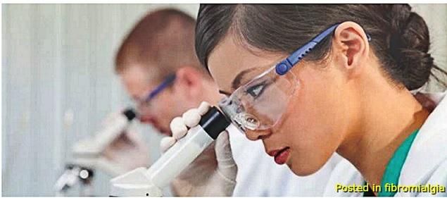 Fibromialgia Estudos Recentes