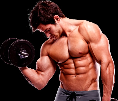 Musculação Maneira Certa - Dicas