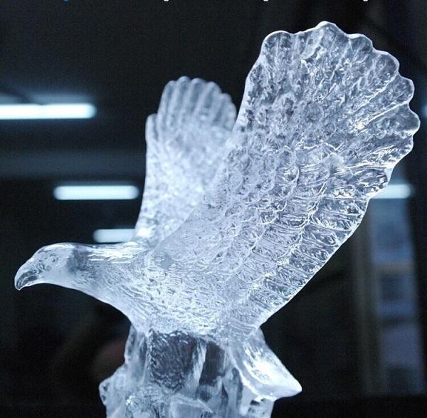 Animais Usados na Decoração – aguia